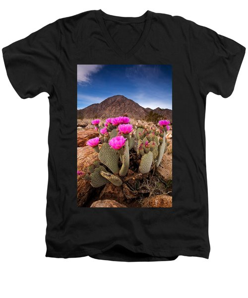 Henderson Canyon Beavertail Men's V-Neck T-Shirt
