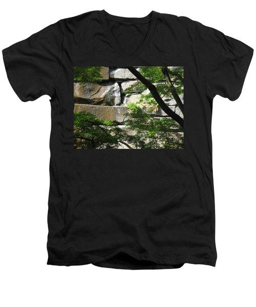 Hidden Waterfall Men's V-Neck T-Shirt by David Trotter