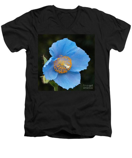 Himalayan Gift -- Meconopsis Poppy Men's V-Neck T-Shirt