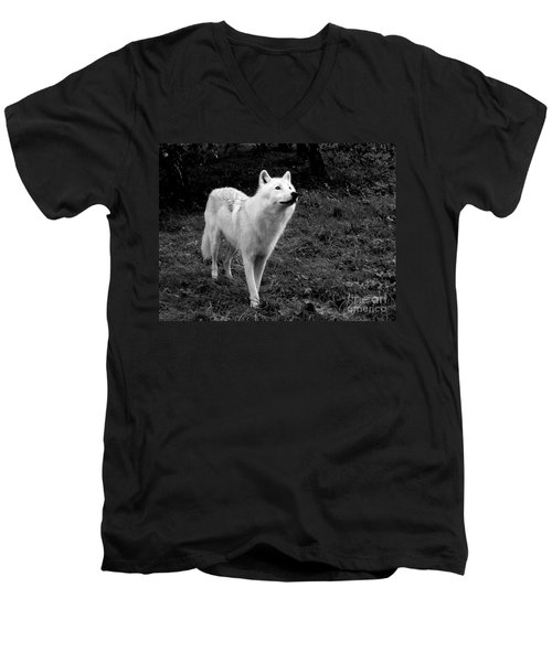 Men's V-Neck T-Shirt featuring the photograph Hopeful by Vicki Spindler