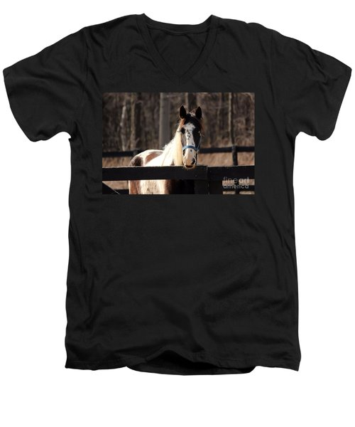 Horse At The Gate Men's V-Neck T-Shirt