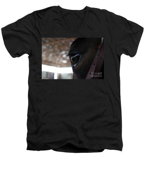 Horse Eye From Behind Men's V-Neck T-Shirt
