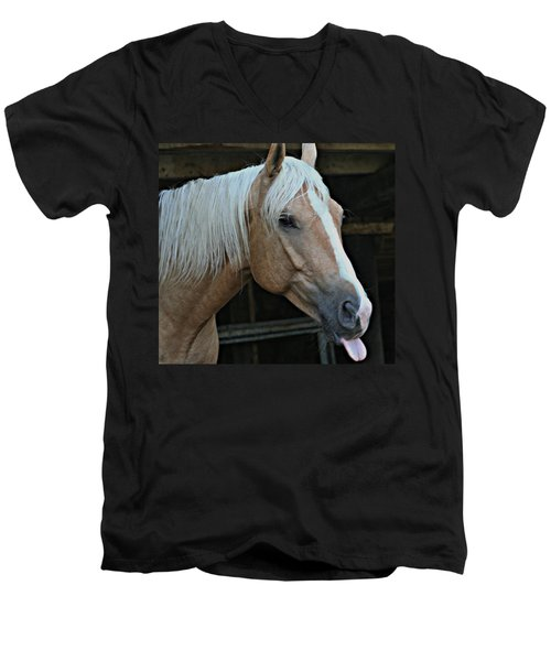 Horse Feathers Men's V-Neck T-Shirt