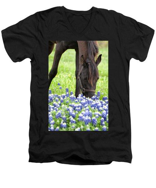Horse With Bluebonnets Men's V-Neck T-Shirt
