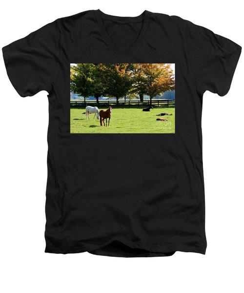 Horses In Fall Men's V-Neck T-Shirt