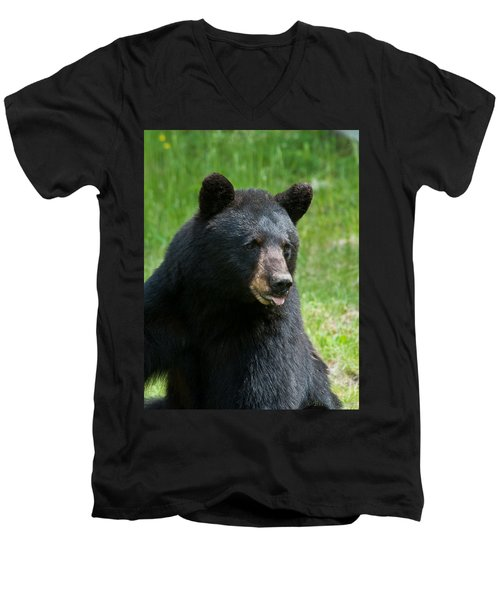 Hot Day In Bear Country Men's V-Neck T-Shirt