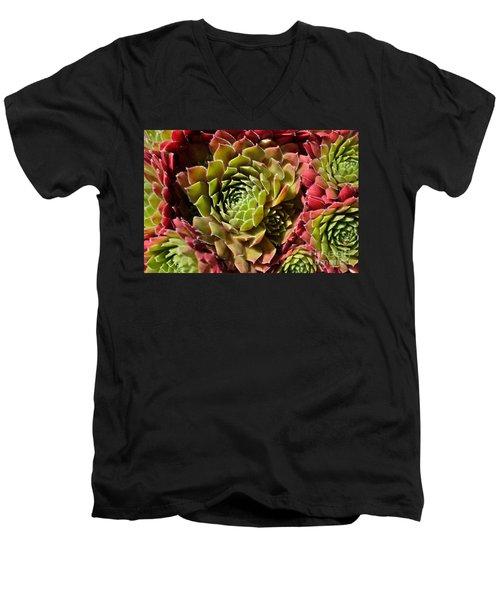 Houseleek Group Men's V-Neck T-Shirt