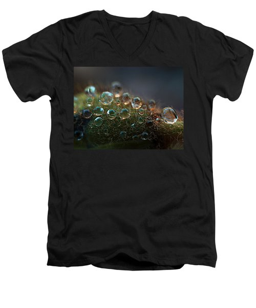 Men's V-Neck T-Shirt featuring the photograph How  Bizzahh by Joe Schofield