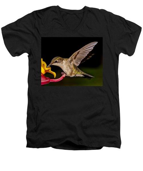 Ruby Throated Hummingbird Men's V-Neck T-Shirt by Brian Caldwell