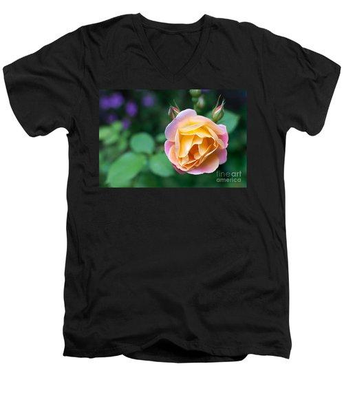 Men's V-Neck T-Shirt featuring the photograph Hybrid Tea Rose by Matt Malloy