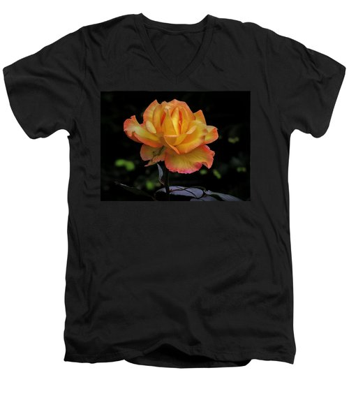 Men's V-Neck T-Shirt featuring the photograph I Know I'm Beautiful by Hanny Heim