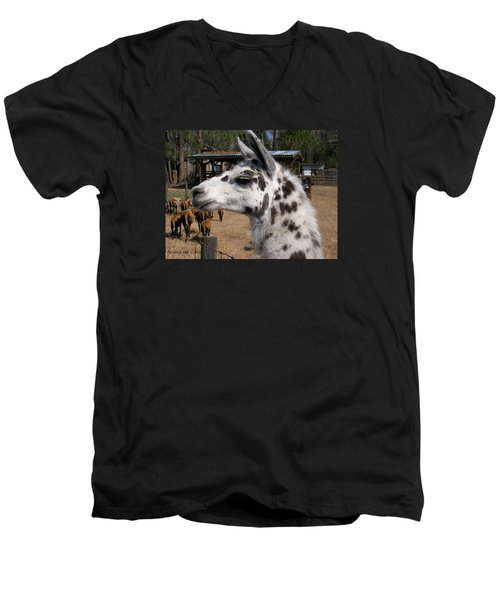 Men's V-Neck T-Shirt featuring the photograph Mad Llama Rules by Belinda Lee
