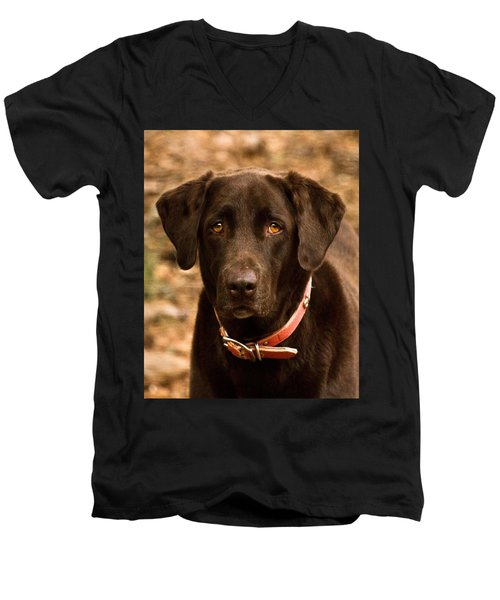 Men's V-Neck T-Shirt featuring the photograph I Swear I Didn't Do It by Robert L Jackson