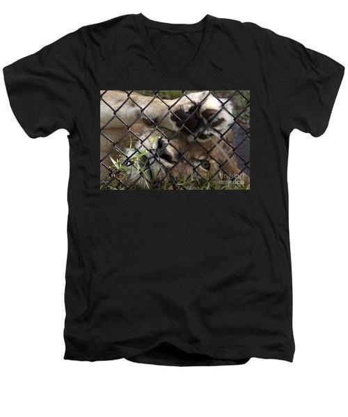 I Want To Go Home - Female African Lion Men's V-Neck T-Shirt