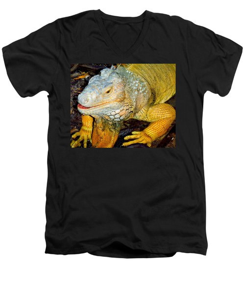 Iggy Men's V-Neck T-Shirt