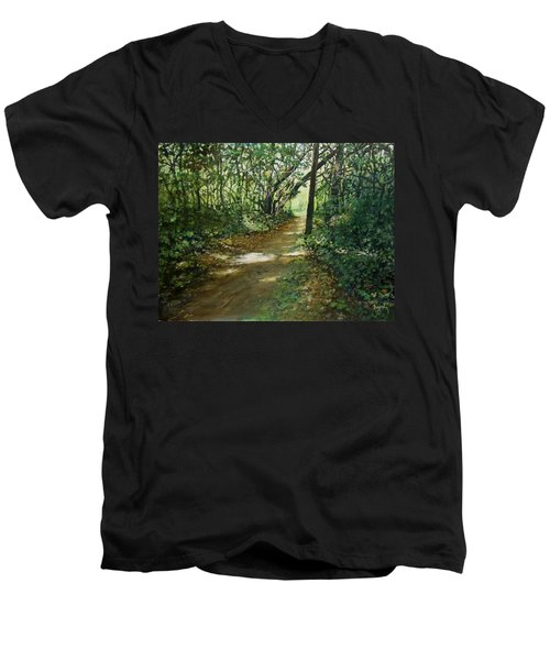 In And Out Of The Shadows Men's V-Neck T-Shirt
