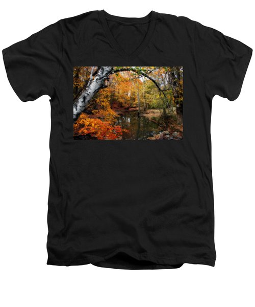 In Dreams Of Autumn Men's V-Neck T-Shirt by Kay Novy