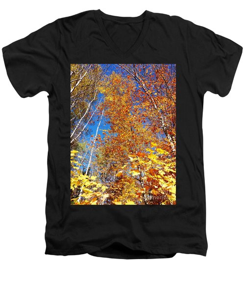 In The Forest At Fall Men's V-Neck T-Shirt