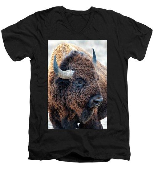 Bison The Mighty Beast Bison Das Machtige Tier North American Wildlife By Olena Art Men's V-Neck T-Shirt