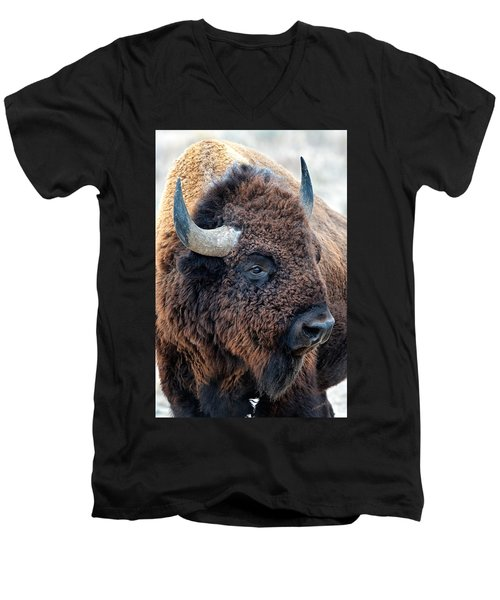 In The Presence Of  Bison - Yes Paint Him Men's V-Neck T-Shirt