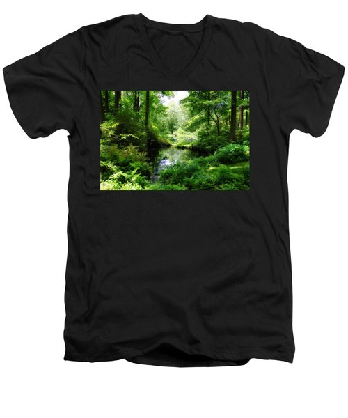 In The Stillness Men's V-Neck T-Shirt