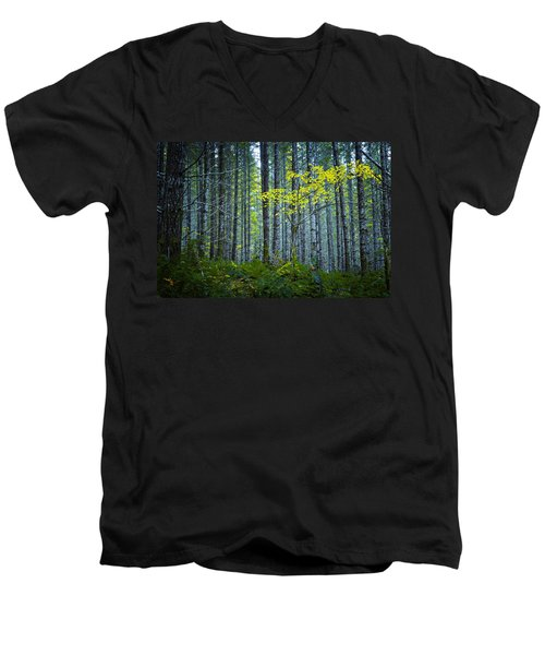In The Woods Men's V-Neck T-Shirt by Belinda Greb