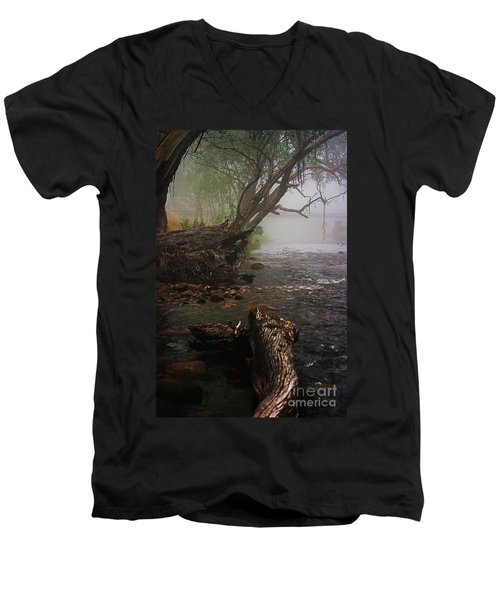 Indeed It Was A Mystical Place Men's V-Neck T-Shirt