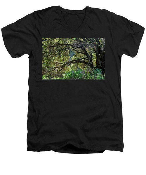 Men's V-Neck T-Shirt featuring the photograph Into The Woods by Susan Wiedmann