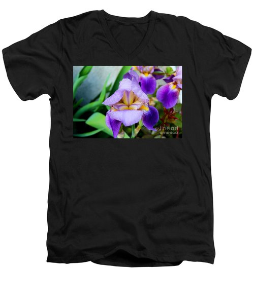 Iris From The Garden Men's V-Neck T-Shirt