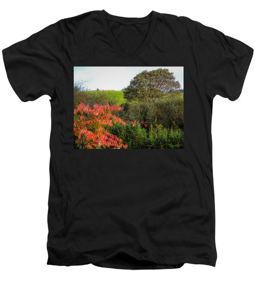 Irish Autumn Countryside Men's V-Neck T-Shirt