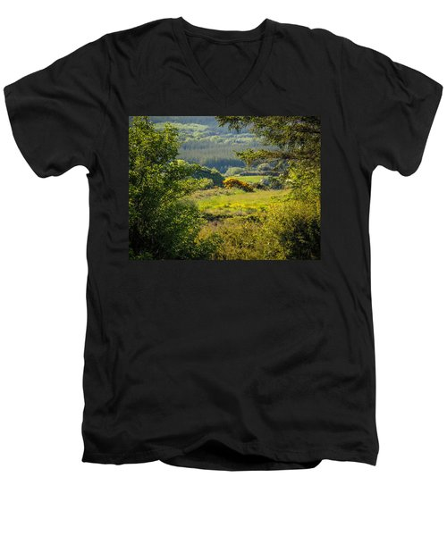 Irish Countryside In Spring Men's V-Neck T-Shirt