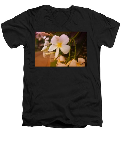 Men's V-Neck T-Shirt featuring the photograph Isle De Java by Miguel Winterpacht