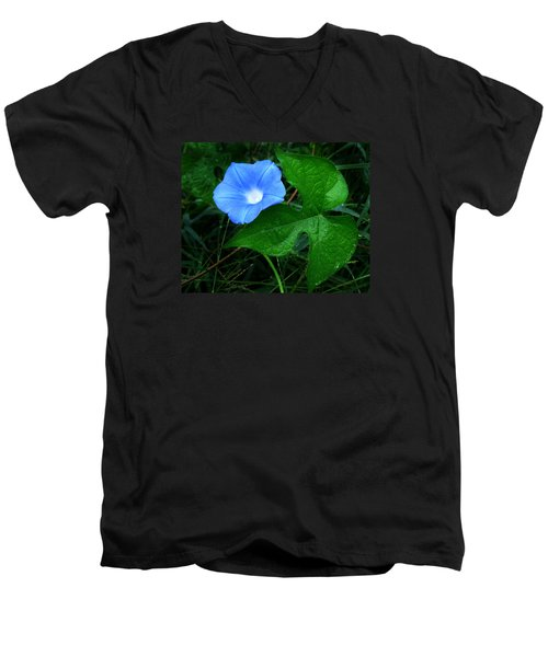 Wild Ivyleaf Morning Glory Men's V-Neck T-Shirt