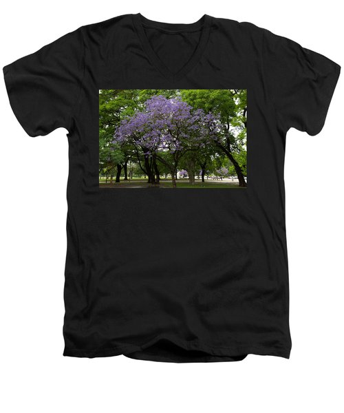Jacaranda In The Park Men's V-Neck T-Shirt