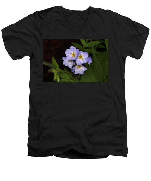 Men's V-Neck T-Shirt featuring the photograph Jacobs Ladder by Alan Vance Ley