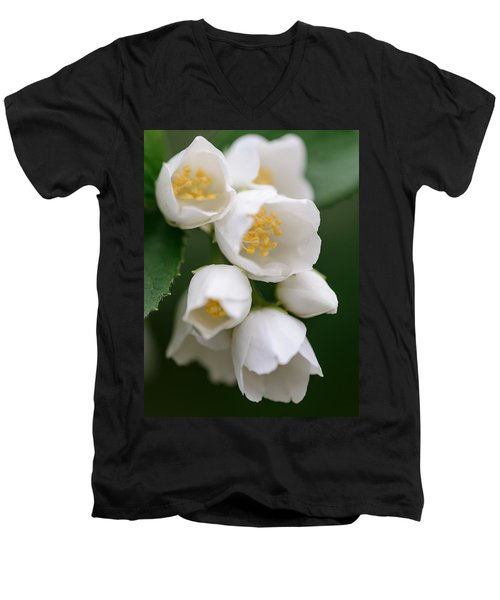 Jasmin Flowers Men's V-Neck T-Shirt