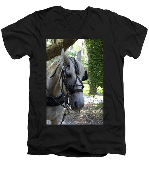 Jekyll Horse Men's V-Neck T-Shirt by Laurie Perry