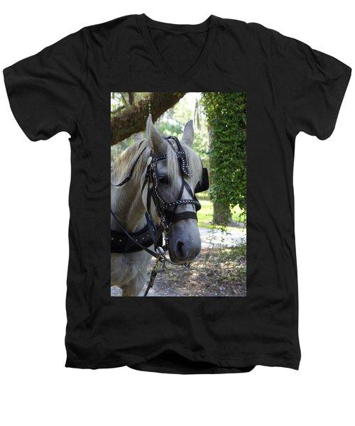 Jekyll Horse Men's V-Neck T-Shirt