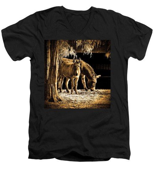Jenny N Jack Men's V-Neck T-Shirt