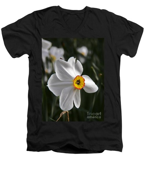 Jonquil Men's V-Neck T-Shirt by Judy Via-Wolff