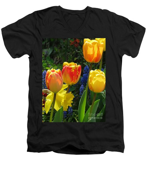 Jubilance Men's V-Neck T-Shirt by Rory Sagner