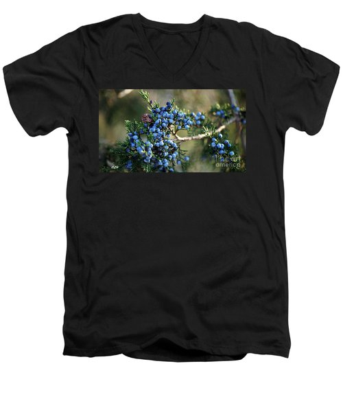 Juniper Berries Men's V-Neck T-Shirt