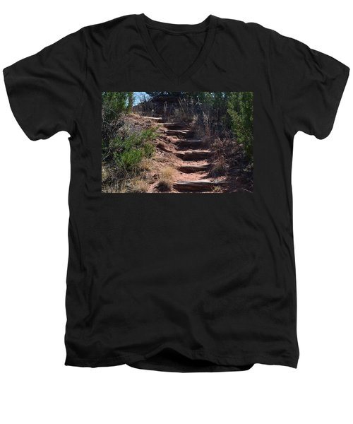 Juniper Ridge Steps Men's V-Neck T-Shirt