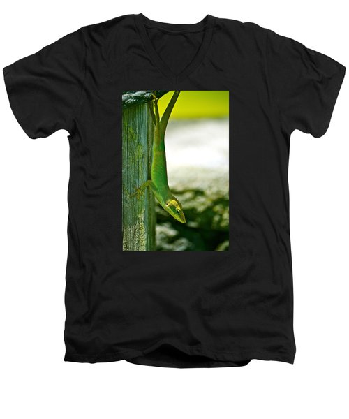 Just Hanging... Men's V-Neck T-Shirt by Lehua Pekelo-Stearns