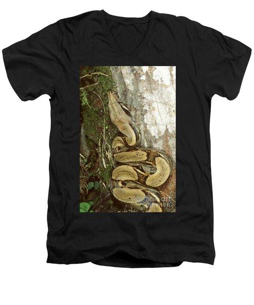 Juvenile Boa Constrictor Men's V-Neck T-Shirt