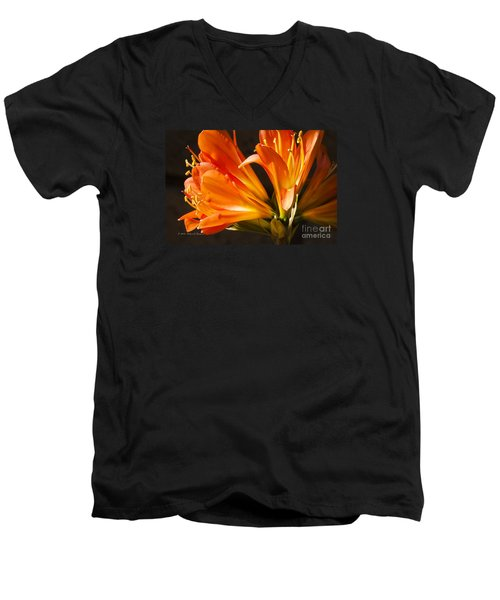 Kaffir Lily Glow Men's V-Neck T-Shirt