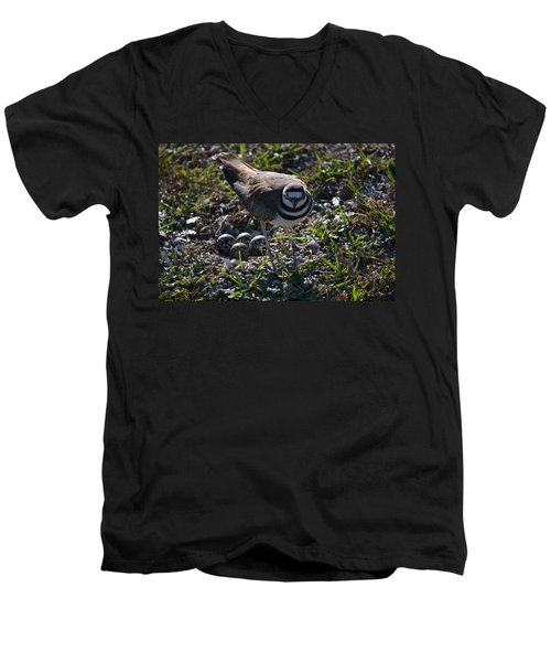 Killdeer Guarding Her Eggs Men's V-Neck T-Shirt by Tara Potts