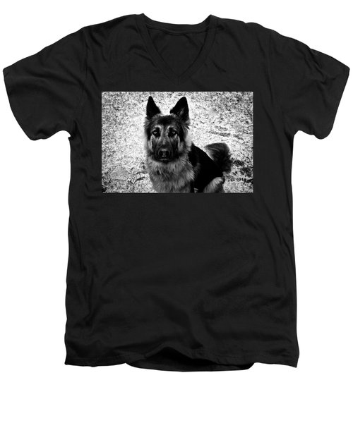 King Shepherd Dog - Monochrome  Men's V-Neck T-Shirt
