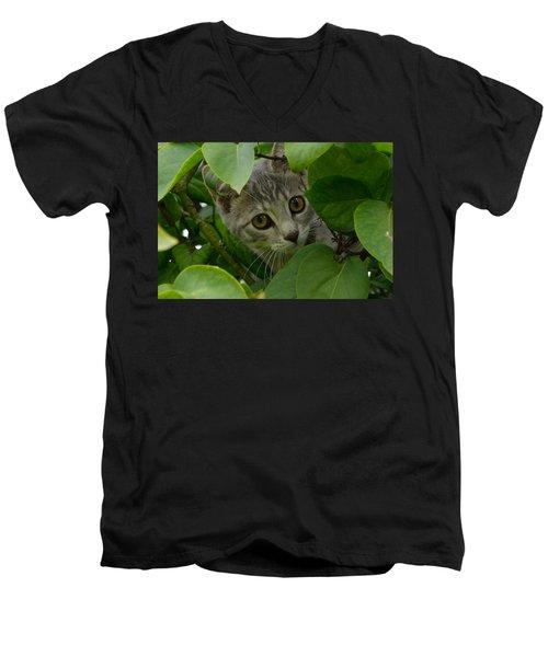 Kitten In The Bushes Men's V-Neck T-Shirt
