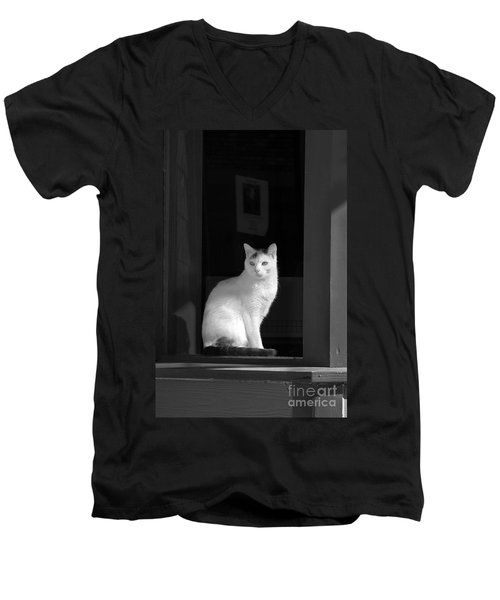 Kitty In The Window Men's V-Neck T-Shirt